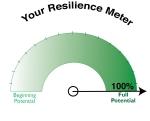 resilience_meterppt100