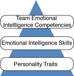 Team Emotional Intelligence Competencies